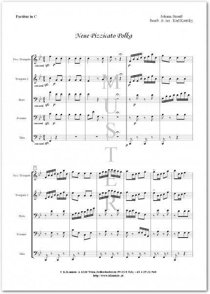 STRAUSS, Johann - Neue Pizzicato Polka